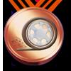race_award_3.png