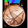 way_award_3.png