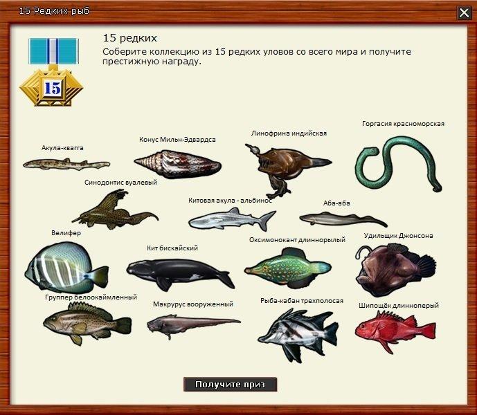 15 редких.jpg